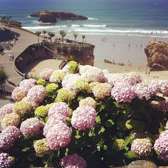 have to go to biarritz later this summer