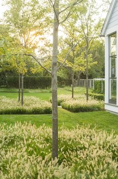 Doyle Herman Design Associates Landscape Design ~ Great pin! For Oahu architectural design visit http://ownerbuiltdesign.com
