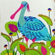 """""""#kolorowanka#color#colors#colour#colorful#fabercastell#stabilo#antystres#kolorowo#liscie#ptaki#ptak#czapla"""""""