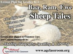 Great lesson teaching kids to tell the difference between real and make-believe while learning about sheep and wool.  Follow link for free lesson plan and resources.