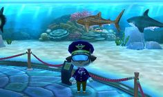 Animal Crossing: New Leaf Diary, Day 6: Went to the island and got these snorkel goggles, here I am with my shark collection. Fancy!