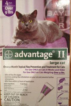 Cat Fleas Medicine