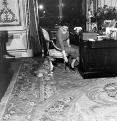 The Young Queen At Her Desk | The Queen's Corgis Stole The Opening Ceremony Show
