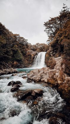 Waterfall XVII / Taupo, New Zealand Art Print by theadventureco Nature Aesthetic, Travel Aesthetic, Adventure Aesthetic, Aesthetic Backgrounds, Aesthetic Wallpapers, Beautiful World, Beautiful Places, Beautiful Forest, Landscape Photography