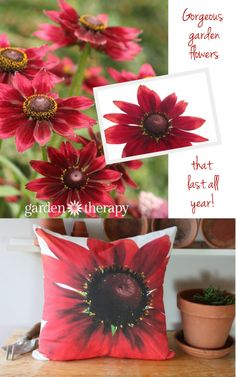 Turn garden flowers into throw pillows so they will last forever!