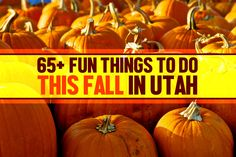 The kids are back in school, and autumn is almost here. That means it's time to start planning some fun fall activities!