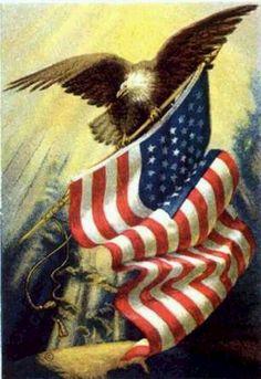 America!                                                                                                                                                                                 More