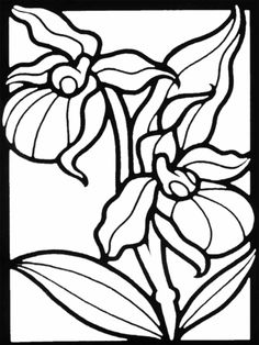Iris flowers - Free Printable Coloring Pages