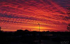 Sol på Sola   Flickr - Photo Sharing!