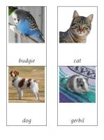 Free montessori cards to teach about common UK pets
