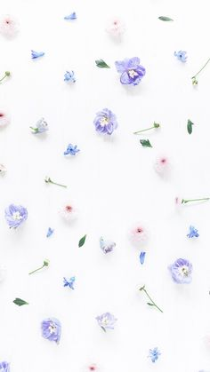 Floral Pattern iPhone Wallpaper is part of Iphone wallpaper vintage - Floral Wallpaper Iphone, Wallpaper Für Desktop, Flowery Wallpaper, Pastel Wallpaper, Trendy Wallpaper, Aesthetic Iphone Wallpaper, Aesthetic Wallpapers, Cute Wallpapers, Floral Wallpapers