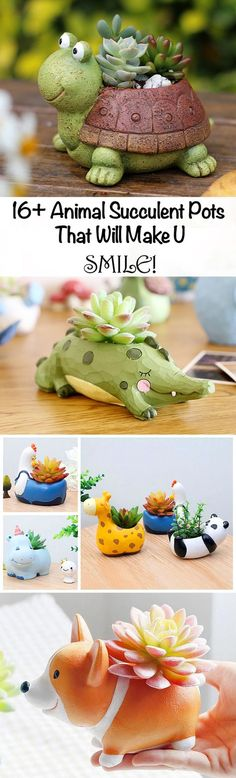 16+ (and growing) Animal Succulent Pots that Will Make You Smile! These clever crafty little critters make great gifts for a garden loving loved one. Or keep them all to yourself and have a fun collection of beautiful succulents sprucing up your home decor.
