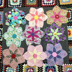 I make Daisy do pattern now、I am crazy about a quilt of Jen kingwell.There are Quilt four which I want to make with her design. オーストラリアのキルト作家  #jenkingwell さんの#daisydoです。彼女のデザインのキルト次から次へと、作りたいものがいっぱい。^_^  #jenkingwelldesigns #amitietextiles #daisydoo #gardenvale #patch #patte rn #moda #パッチワーク #suzukokoseki #超DAISY #キルト  #moda