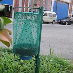 Drosophila Fly Trap Catcher Net The Ultimate Fly Catcher Insect Bug Killer
