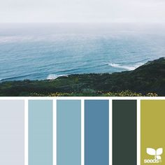 today's inspiration image for { color view } is by @lizlangley ... thank you, Liz, for another amazing #SeedsColor image share!