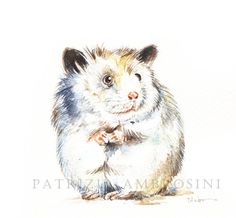 Original 7x9 Watercolour ..hamster...NOT A PRINT ..Original Painting Collectible