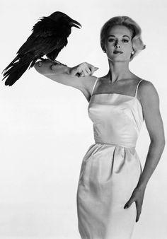 A louca obsessão do diretor e produtor Alfred Hitchcock (1899 – 1980) pela atriz Tippi Hedren, 82 anos, é recontada nos 90 minutos do telefilme The Girl. A produção da HBO estreia neste sábado (20), às 21h, na TV norte-americana...