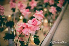 150718-0081fotografo-sao-paulo-foto-bauru-marilia-pederneiras-embu-casamento-fotos-para-casamento-filmagem-de-videos-noivas-damelie-fotografia.jpg