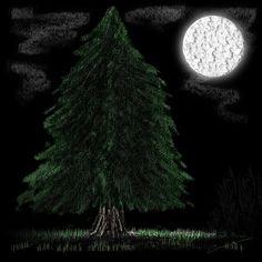 Lone Tree At Night Digital Art By Michael Hurwitz