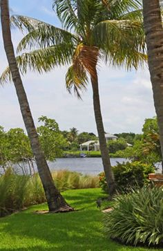 The Loxahatchee Riverfront features a tropical waterfront setting! http://www.waterfront-properties.com/loxahatcheeriverfront.php