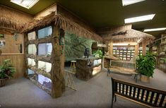The Reptile Zoo In Southern California Is Unlike Anything You've Seen Reptile Pet Store, Reptile Zoo, Amphibians, Reptiles, Zoo Architecture, Hamster Cages, Tiny Turtle, Homemade Dog Food, Animal Photography