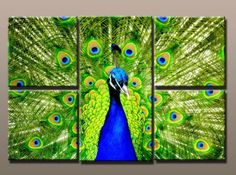 abstract peacock art - Google Search