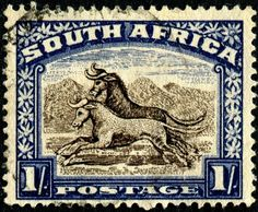 Stamps ©: Stamp of South Africa [{Wildebeest (Connochaetes sp. Out Of Africa, West Africa, Animals With Horns, South Afrika, Vintage Stamps, African History, Stamp Collecting, My Stamp, Lion Sculpture