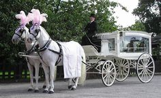 funeral carriage. Kepong Funeral, Hock Thai 福泰殯儀服務 Casket Funeral Services, Funeral Parlour, Funeral Home