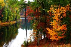 The Fall Foliage At These 12 State Parks In Mississippi Are Stunningly Beautiful