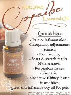 Young Living Essential Oils: Copaiba. Essential Oils by Young Living. For more info and to order please go to www.EssentialOilsEnhanceHealth.com by AislingH