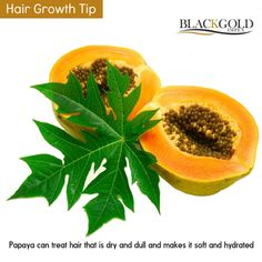 Tip of the day : Papaya Fruit  1. One of the little-known benefits of papaya is that it can stimulate hair growth.  2. Papaya has folic acid that helps improves circulation to the hair follicles and promotes hair growth  3. Papaya can treat hair that is dry and dull and makes it soft and hydrated.