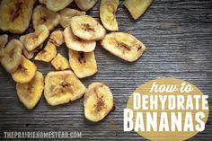 Dehydrating Bananas: Easy Tutorial