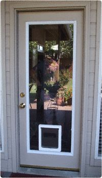 Full View Glass Insert with Pet Door - Large