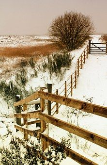 Landscape, Winter, Snow