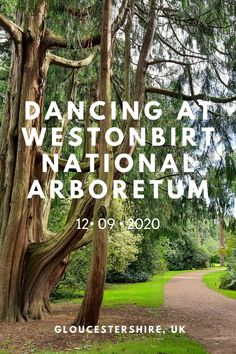 footSTEPS is a blog that follows Gemma, a professional dancer, as she creates short dance films on her travels around the world. Surrounded by rare species of trees from across the globe, I dance through the grounds of Westonbirt National Arboretum in Gloucestershire, UK.