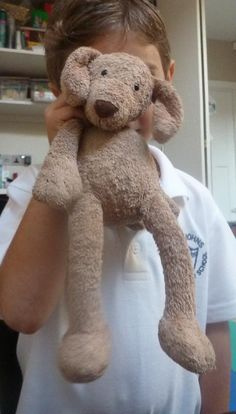 """Lost on 30 Aug. 2015 @ South Kensignton London. We have lost a grey Nike backpack with a precious brown jellycat """"Teddy"""" inside.We flagged down a taxi near The national history muesum and dropped off in Regent Street outside Hamleys.In the bag w... Visit: https://whiteboomerang.com/lostteddy/msg/0bfml3 (Posted by Carmelo on 27 Sep. 2015)"""