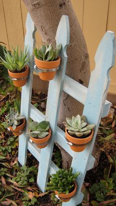 Picket Fence Vertical Planter.Organic Garden Planter is perfect for any size home or yard.Plant herbs,flowers or succulents