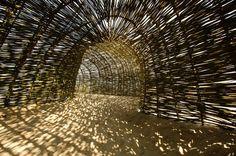 Gallery of SANDWORM / Marco Casagrande - 14