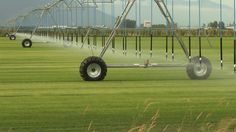 Towards autonomous irrigation. Can artificial intelligence irrigation system reduce wate...