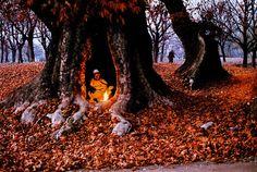 Wonderful Kashmir Photography By Steve McCurry  