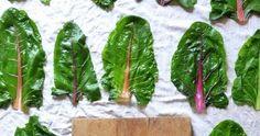 Ein Blog mit Rezepten meiner französischen Gartenküche