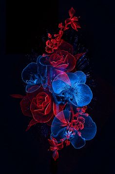 55 ideas for music tattoo skull behance Blue Roses Wallpaper, Dark Wallpaper, Colorful Wallpaper, Galaxy Wallpaper, Flower Wallpaper, Unique Wallpaper, Wallpaper Pictures, Art Pictures, Photos