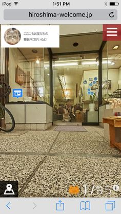 Tour this Japanese city online and meet all the local meowsters. Comes complete with kitten profiles!  http://hiroshima-welcome.jp/kanpai/catstreetview/
