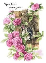 Afbeeldingsresultaat voor marjolijn bastin verjaardag kaarten op pinterest