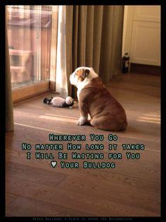 Bulldog Poem: I am Your Dog