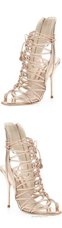 Poppy Pea  ✦ The Socialite's Shoes {a peak into Ms....