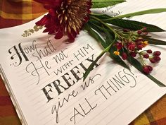 Day 26: | Freely Give Us ALl Things