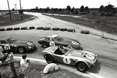 The Miles/Morton Shelby Cobra 427 leads the Ferrari 250 GTO's of Abate/Guichet and Grossman/Thompson through the hairpin at Sebring, Ac Cobra, Mustang Cobra, King Cobra, Road Race Car, Road Racing, Le Mans, Bicicletas Raleigh, Sports Car Racing, Auto Racing