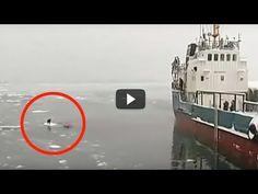 Este video ha hecho llorar al mundo entero en tan solo 4 minutos - FamiliaSalud.com