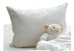 Suite Sleep Little Lamb Woolly Bolas Toddler Pillow. This cozy wool pillow is sized just right for kids. Adjust the fluffy fill to get the perfect comfort. Wool Pillows, Throw Pillows, Benefits Of Sleep, Toddler Pillow, Natural Pillows, Healthy Sleep, Pillow Protectors, Wool Felt, Felted Wool
